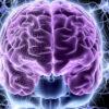 sposobna li junaya krov omolodit mozg starikov